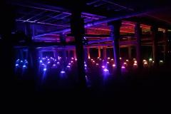 concerts-21